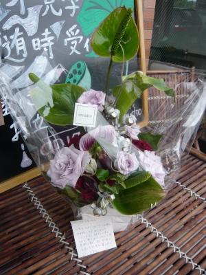 blogpicP1060397.jpg