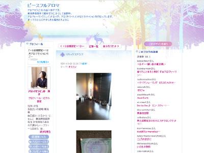 blogpicjunkoblog.jpg